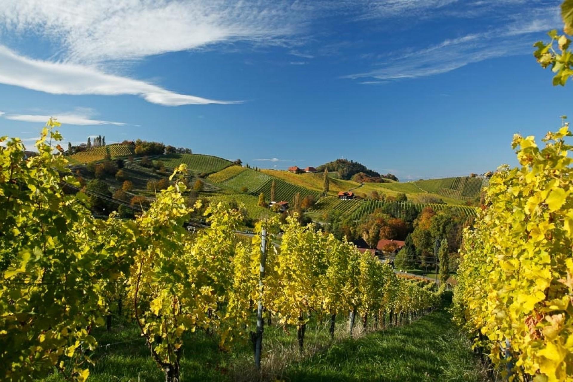 Südsteirische Weinstrasse - Canon Academy Spezialthemen