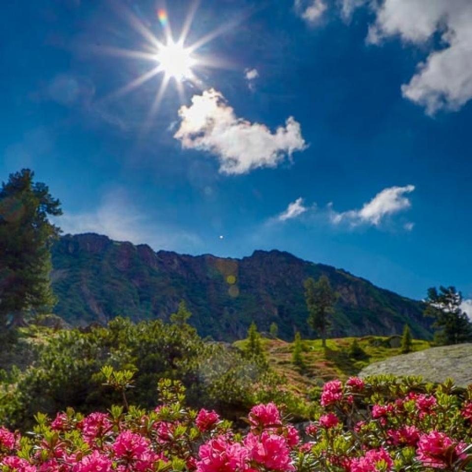 Fotoworkshop Ramsau – Naturfotografie am Fuße des Dachsteins - Canon Academy